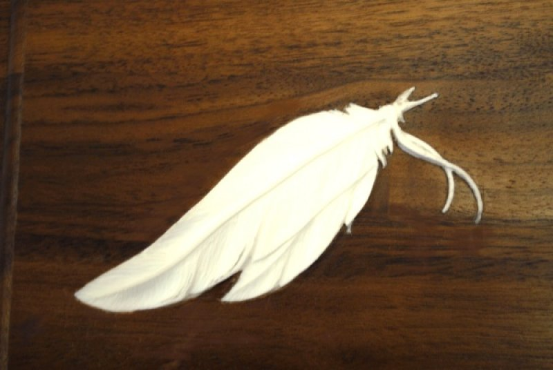 Carved Indian Feather Ivory Inlay