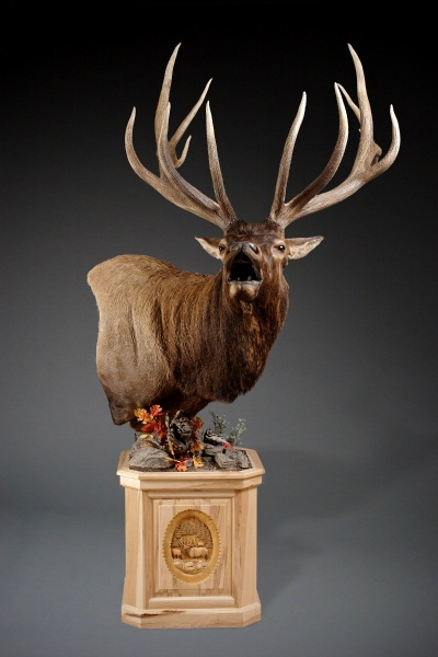 Forward Elk Carved Pedestal
